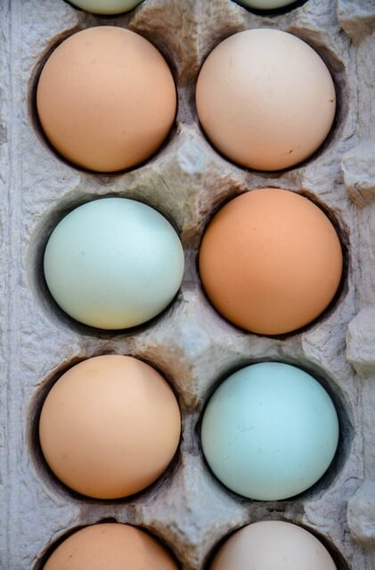 Farm Fresh Eggs - delivered weekly to Waypoint House!