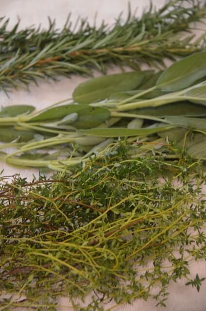 Fresh Herbs from the Waypoint House Garden