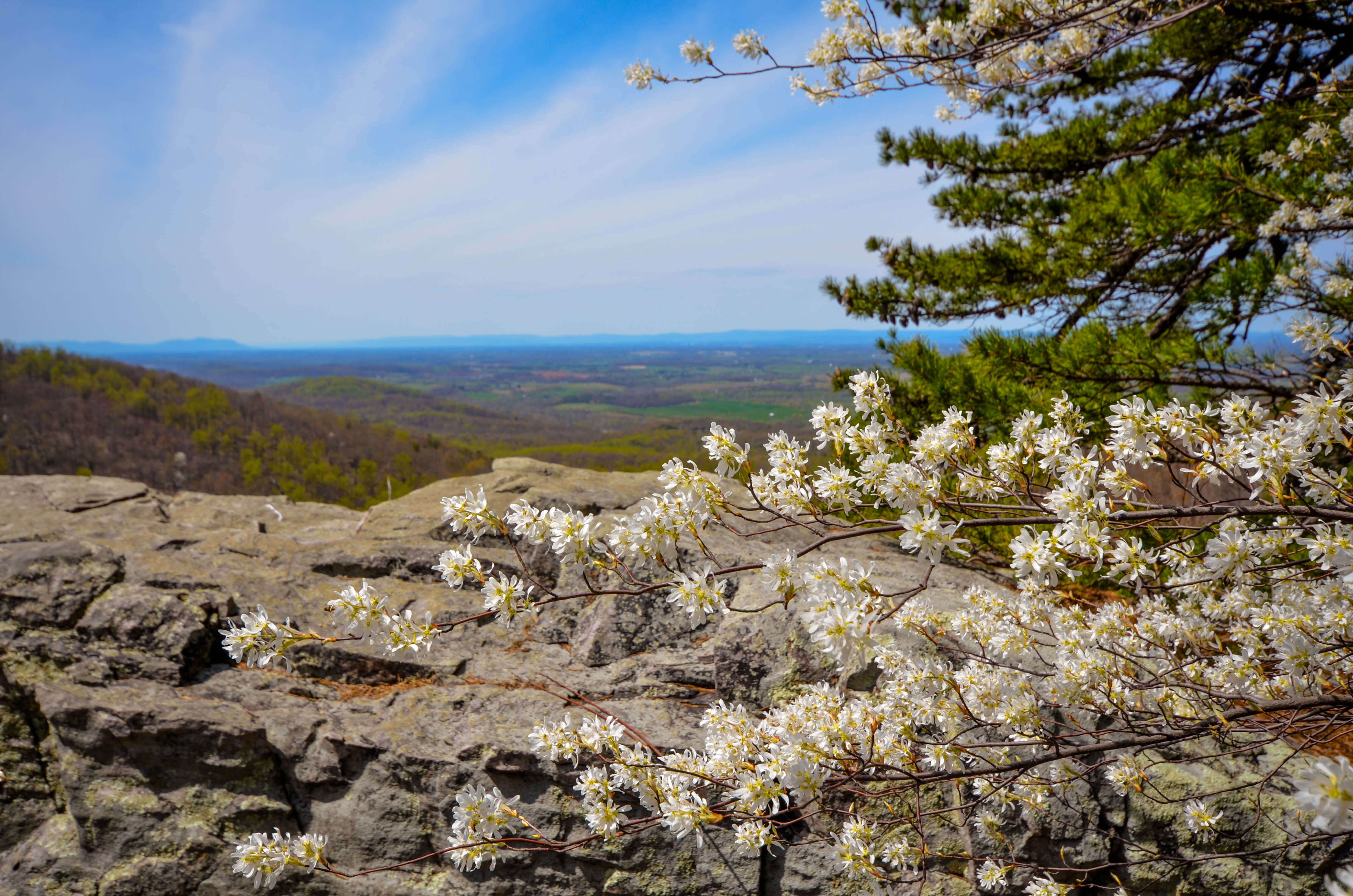 Raven Rock Overlook